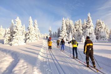 groupe skieurs de fond