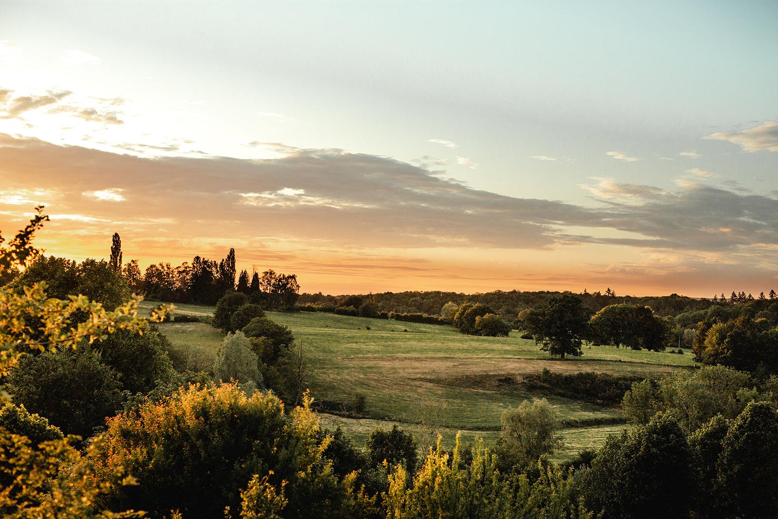 Photo d'un champ entouré d'arbres avec un coucher de soleil